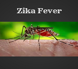 Emergence of Zika Fever Poses a Public Health Concern
